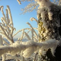 sneeuwpaal