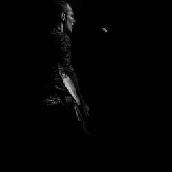 The Bassplayer