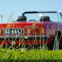 Green grass, red Alfa