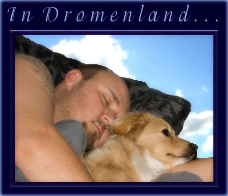 In dromenland -