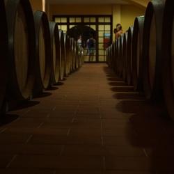 wijn kelde op griekeland kos