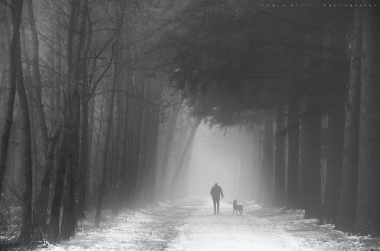 Zwart/Wit Mastbos - Winters tafereel in het Mastbos.