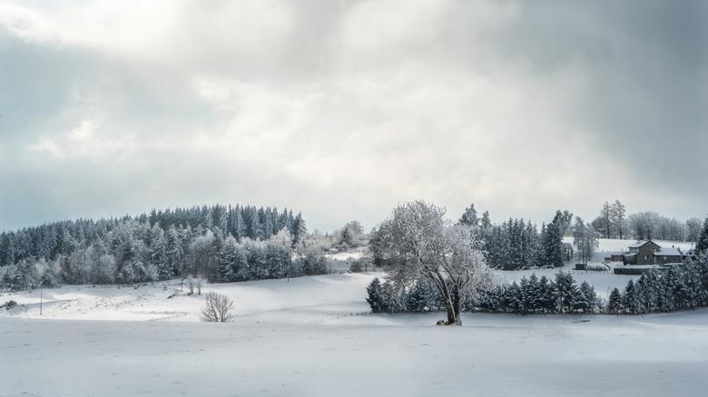 Winterlandschap - Heel veel dank voor alle reacties op mijn vorige foto 'Wintermoeheid'
