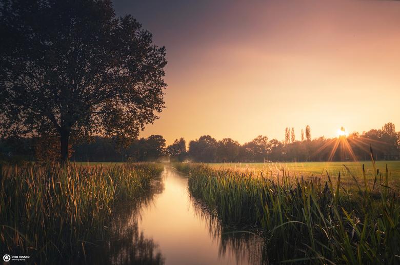 Dutch stream - Zomaar een slootje in Bladel.