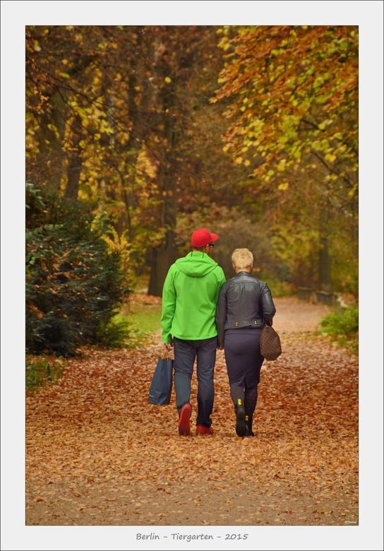 Tiergarten Berlin....Kontrast im Herbst.... - Het grote Tiergarten park in Berlijn is sowieso een prachtige locatie midden in deze grote mooie werelds