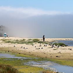 Wolken op het strand