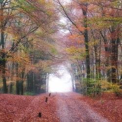 Herfst in aantocht