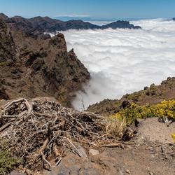 La Palma - La Caldera de Taburiente 2