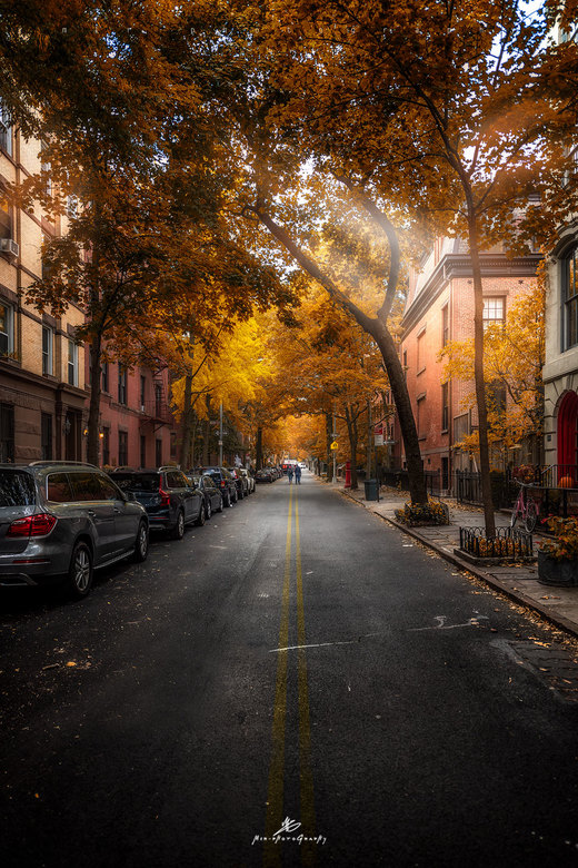 In the streets of New York