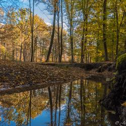 Rodebeek Schutterspark Brunssum