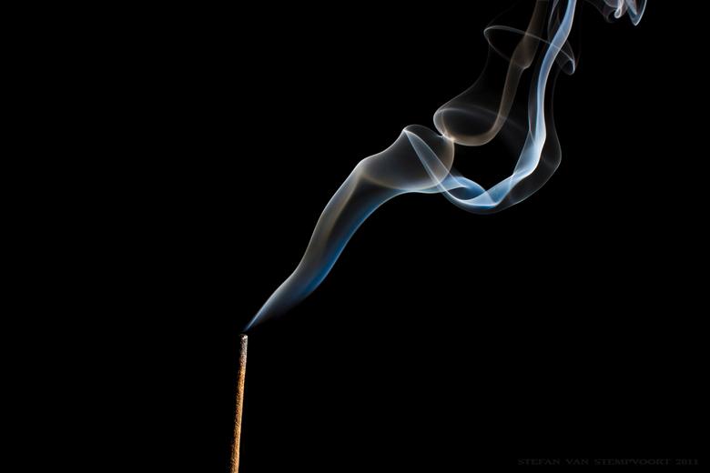 Rook - rook gemaakt met flitser vanaf rechterzijde