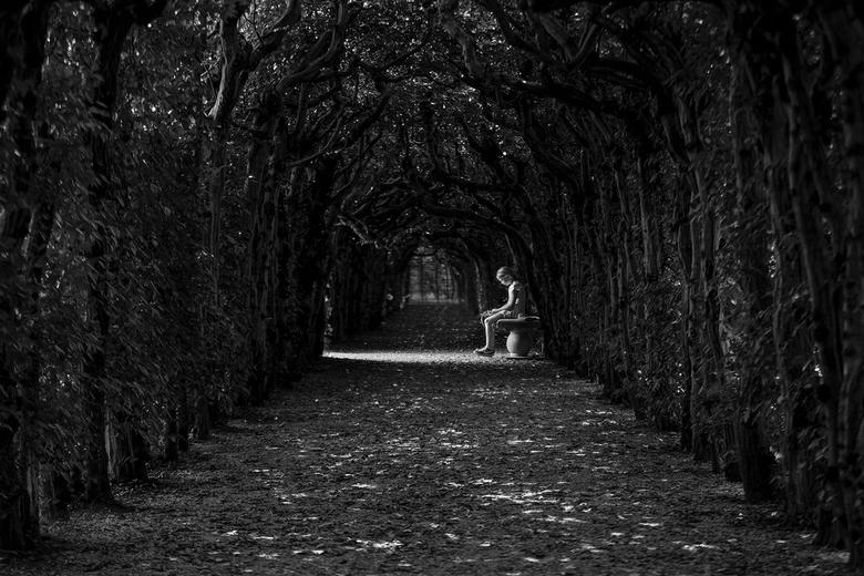 Alone - Alone....