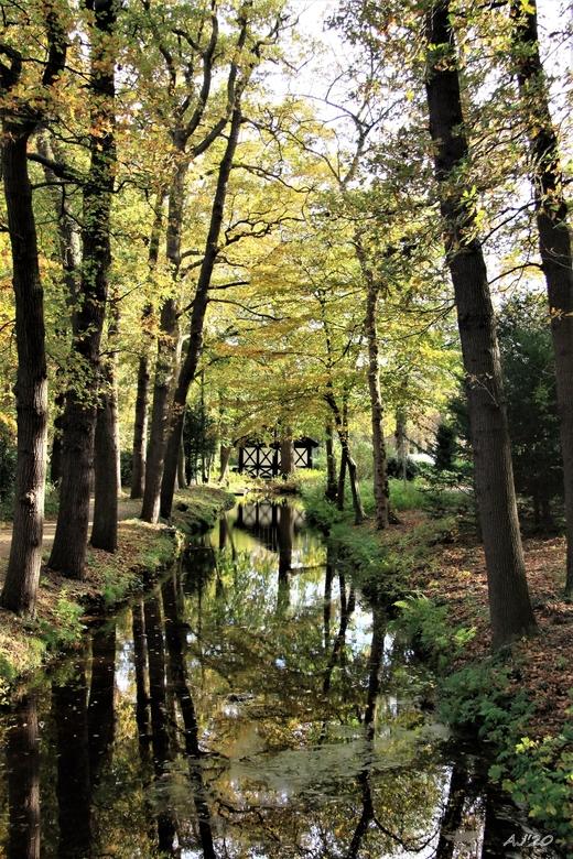 landschapshuisje  - Park Te Werve te Rijswijk <br /> Gtjs.AJ62