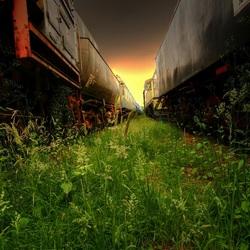 Between locomotives