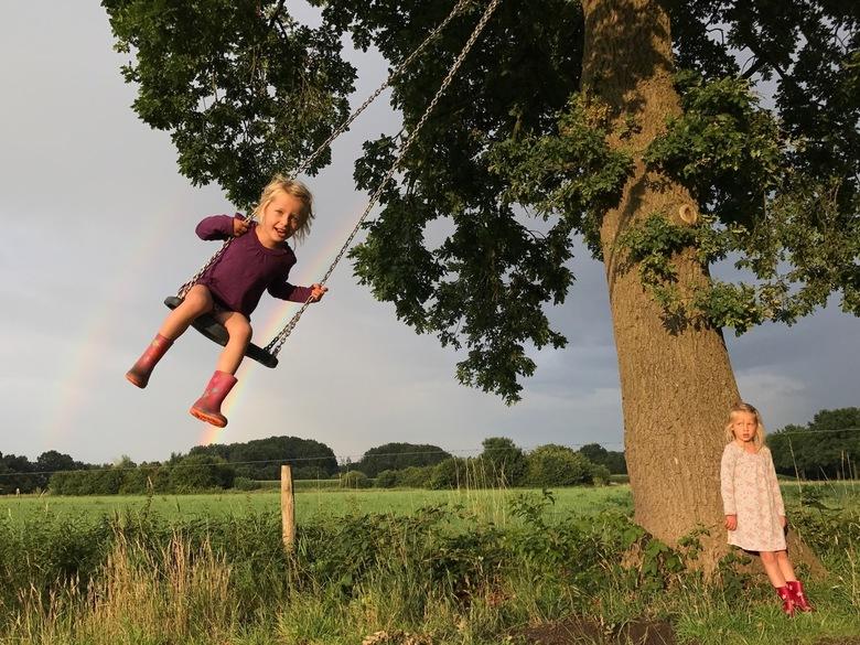 Kamperen in Groesbeek - De eerste dag op camping Bij Ons in Groesbeek (juli 2017) maken we een avondwandeling en komen deze boomschommel en dubbele re
