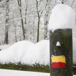 sneeuw_20091217_027