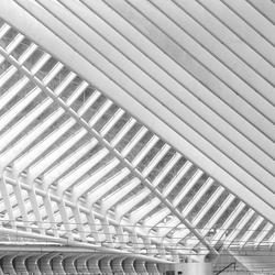 Calatrava Lijnen