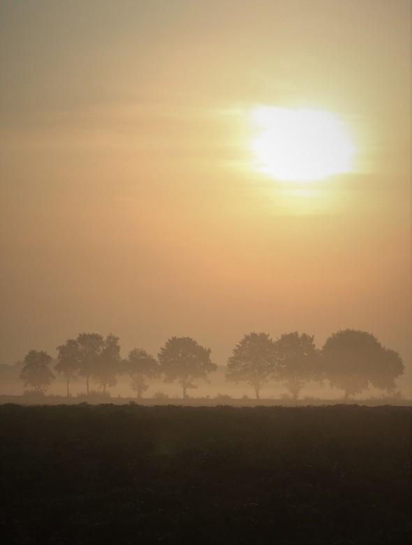 Ochtendmist in Drenthe - Vorige week toen het nog heel vroeg was, de zon net op was en er ochtendmist boven het land hing