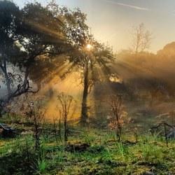 AWD, de eerste zonnestralen laten zich zien.