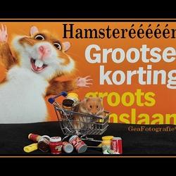 Hamsterééééén....*