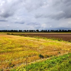 Drenthe 19