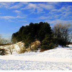 Winter in de duinen