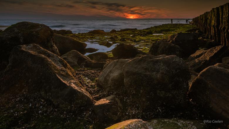 Zeeland1 - Een prachtige avond. Eerst de voorgrond gefotografeerd, en dan gewacht tot de zon onderging voor een tweede foto.