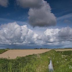 Zeeuwse polder