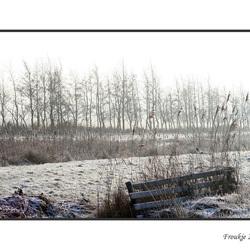 mijn laatste winterfoto