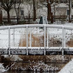 Winter Groet