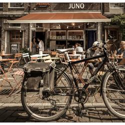 Juno_1