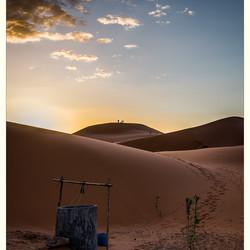 Woestijn ontwaken