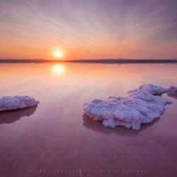 Pink lake-2