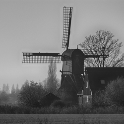 Landschap in zwart wit