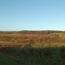 Licht en schaduw in Limburgs landschap