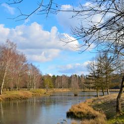 Landschap Leemputten Dorst