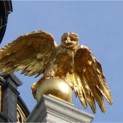 gouden vogel