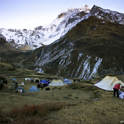 Amdo caravan at sunrise