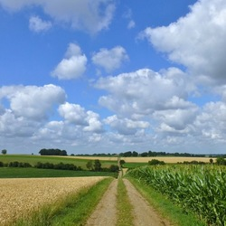 Wandelend door het Limburgs land