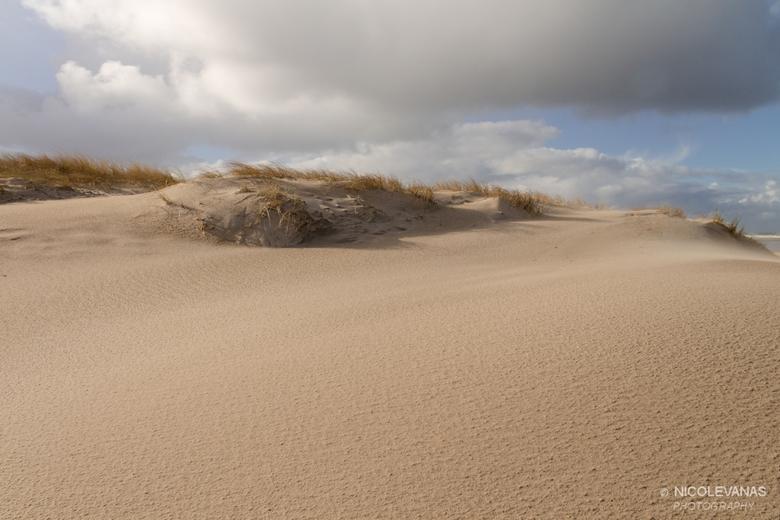 De sahara van Texel. - Na een flinke hagelbui, heel vele wind, zag het duin nabij het vuurtoren strand van Texel er zo uit.<br /> Net de sahara, zo m