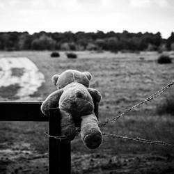 Teddybeertje die over het hek wil klimmen.