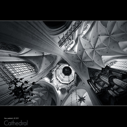Cathedral [5]