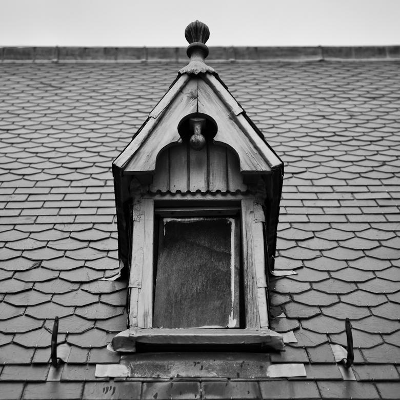 Voor Cor - Op het dak van de Bavo staan heel wat dakkapellen die gerenoveerd moeten worden. Werk aan de winkel Cor!