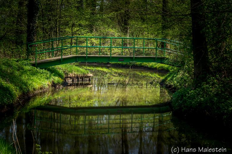 Hans Malestein-0396