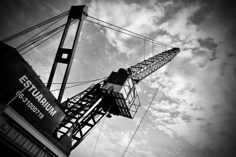 Crane in the clouds -