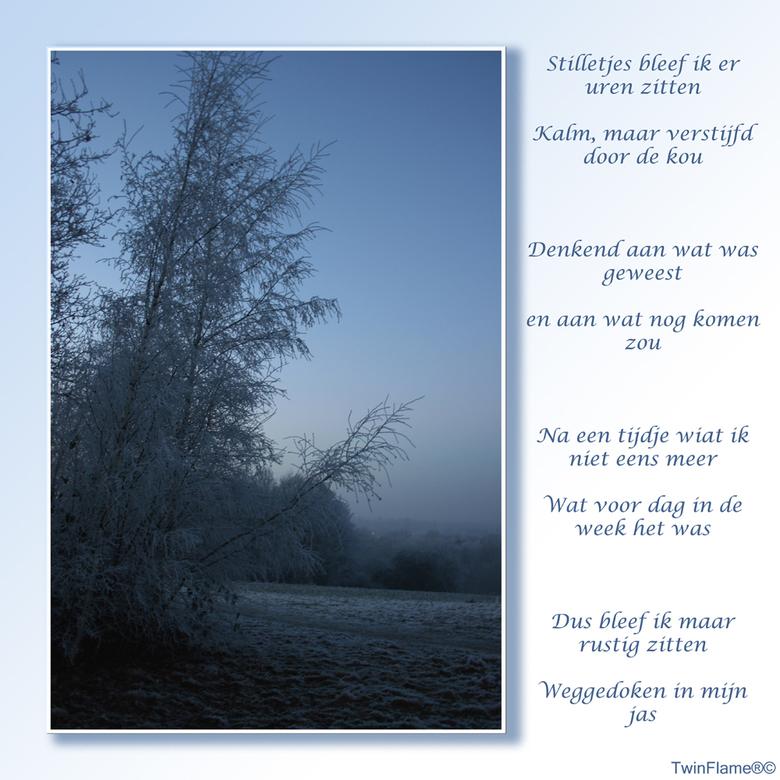 Winter - Hallo allemaal,<br /> <br /> Hier zijn we weer.<br /> De foto is laatst gemaakt toen ik in de kou het bos was &quot;ingerend&quot; om al d