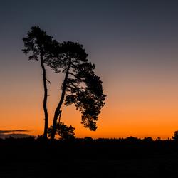 den aekingerzand bij zonsopkomst