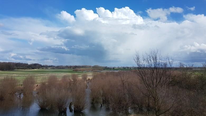 landschap zaltbommel - vanuit rijdende trein deze foto genomen.<br /> omdat ik net over de brug bij Zaltbommel was gereden krijg je dit panorama voor