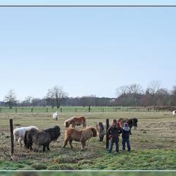 Dag paardjes, dag kindjes