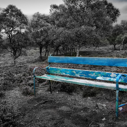 Bench.......
